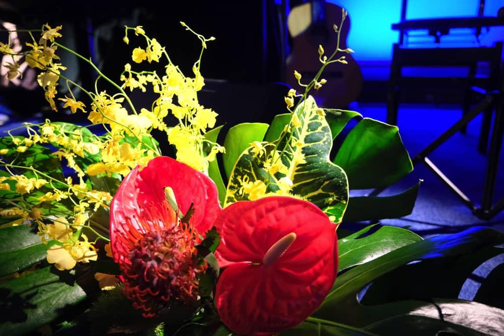 """""""小野リサBossa Nova Live 2021""""7月18日・19日の2日間にわたって開催 DSCF4788"""